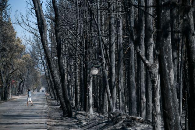 Η νέα έκθεση της Διακυβερνητικής Επιτροπής για την Κλιματική Αλλαγή (IPCC) δεν αφήνει περιθώρια για ολιγωρία | tovima.gr