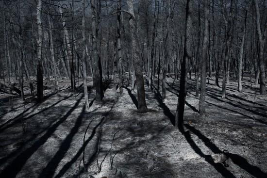 Αποκαρδιωτικές εικόνες από drone αποτυπώνουν το μέγεθος της βιβλικής καταστροφής | tovima.gr