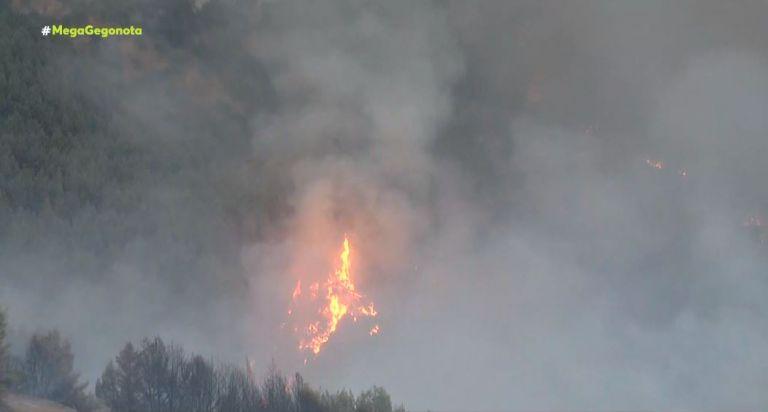 Φωτιά στην Αρκαδία – Σε πύρινο κλοιό η Γορτυνία | tovima.gr