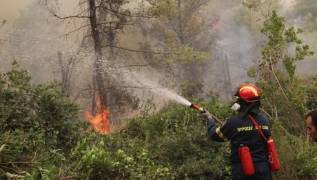 Έξι φωτιές από κεραυνούς σε Μάνδρα και Πόρτο Γερμενό | tovima.gr