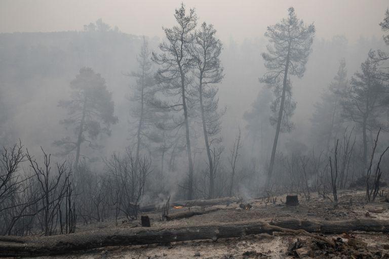 Μητσοτάκης – Η απόδοση ευθυνών για τις πυρκαγιές θα γίνει μετά το τέλος της μάχης | tovima.gr