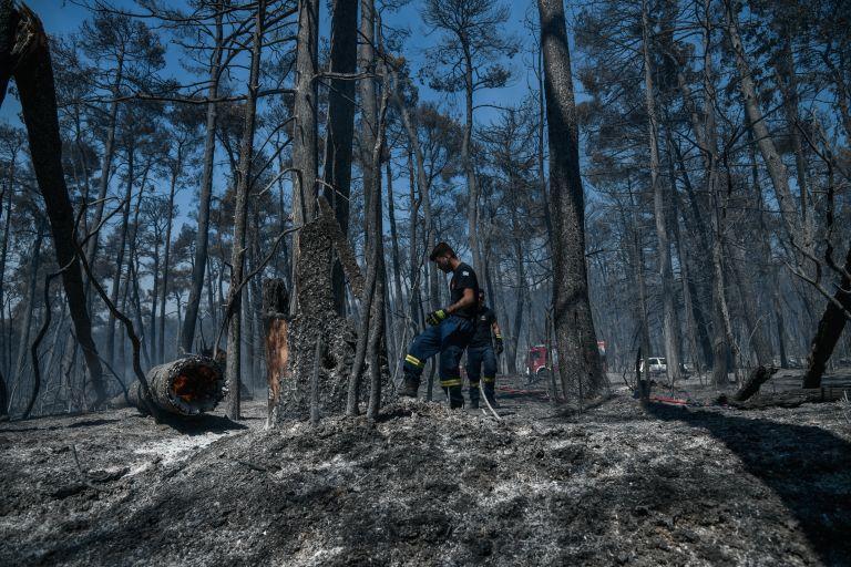 Μητσοτάκης – Δεν τα καταφέραμε όπως θέλαμε στο Τατόι – Μας ξέφυγε η φωτιά στη Βαρυμπόμπη | tovima.gr