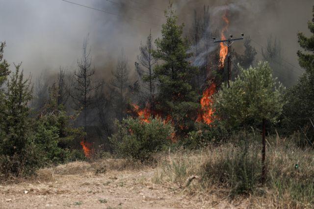 Πολύ υψηλός κίνδυνος πυρκαγιάς και σήμερα – Προσοχή σε 4 Περιφέρειες | tovima.gr