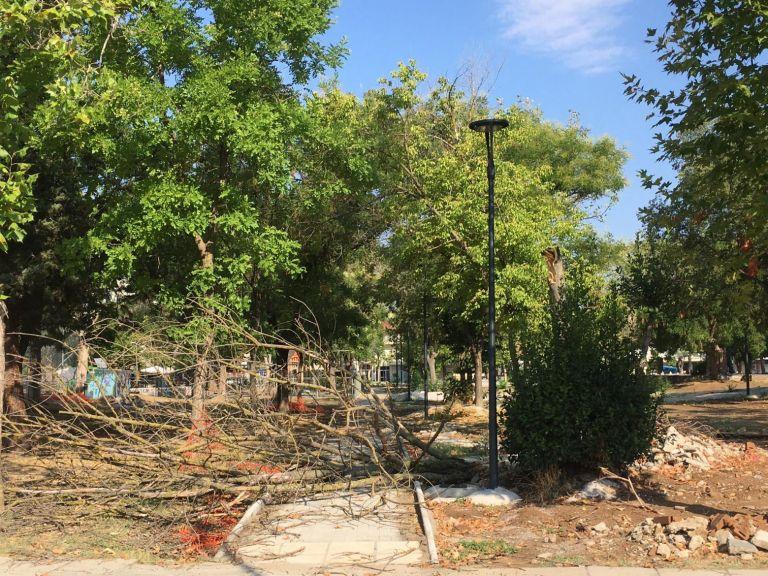 Λάρισα – Πολλές ζημιές από τις χθεσινές βροχές [εικόνες] | tovima.gr