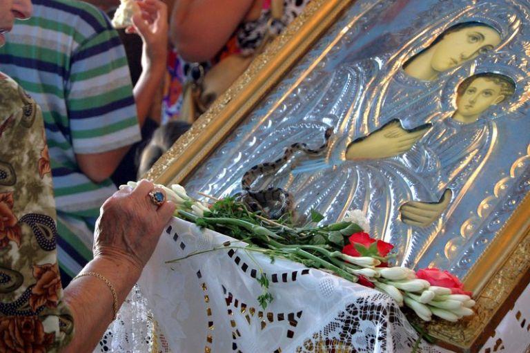 Κεφαλονιά – Εμφανίστηκαν και φέτος τα θαυματουργά φιδάκια της Παναγίας   tovima.gr