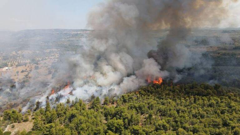 Φωτιά στη νότια Εύβοια – Πνέουν ισχυροί άνεμοι | tovima.gr