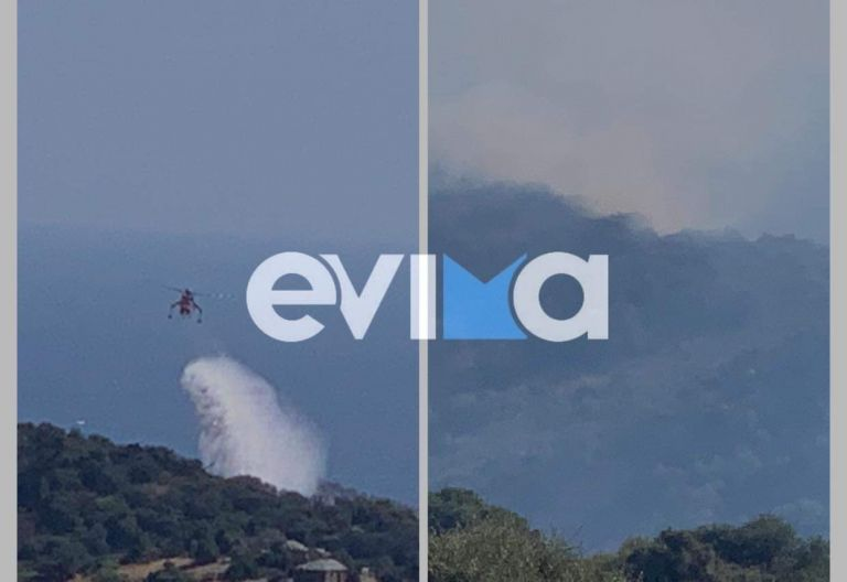 Εύβοια – Υπό έλεγχο η φωτιά στις Πετριές – Παραμένουν ισχυρές δυνάμεις στην περιοχή   tovima.gr