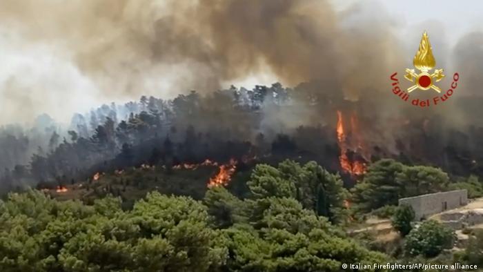 Ποιος φταίει για τις δασικές πυρκαγιές; | tovima.gr