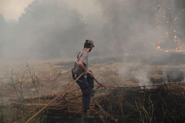 Σακελλαροπούλου – Μήνυμα για τον Δεκαπενταύγουστο με φόντο τις φωτιές | tovima.gr
