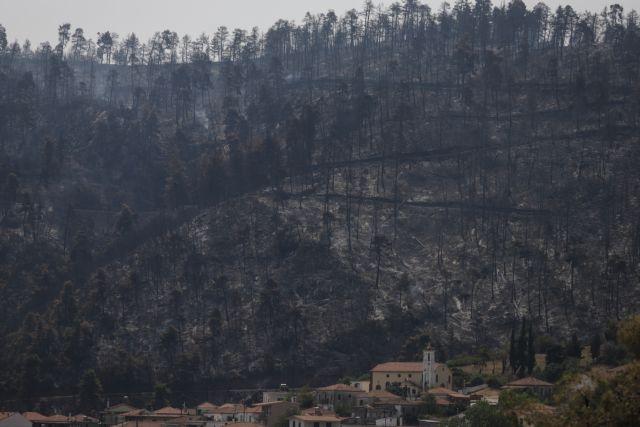 Φωτιά στην Εύβοια – Τεράστια οικονομική καταστροφή – Σε απόγνωση οι επιχειρηματίες | tovima.gr