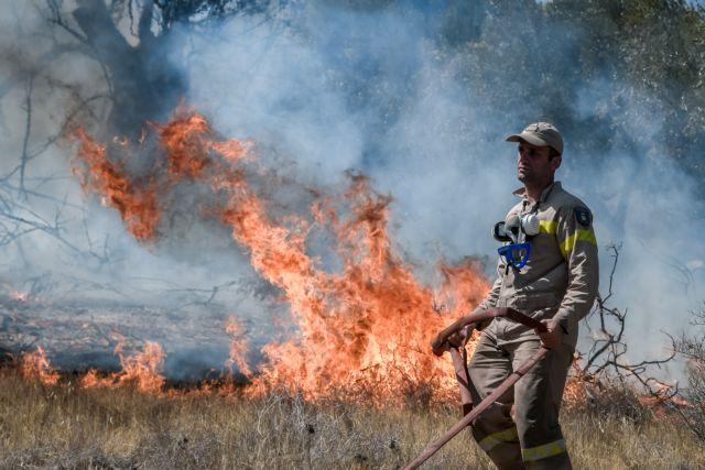 Χρυσοχοΐδης – Βελτιωμένη η κατάσταση στη Λαυρεωτική – Δύσβατο το μέτωπο στα Βίλια   tovima.gr