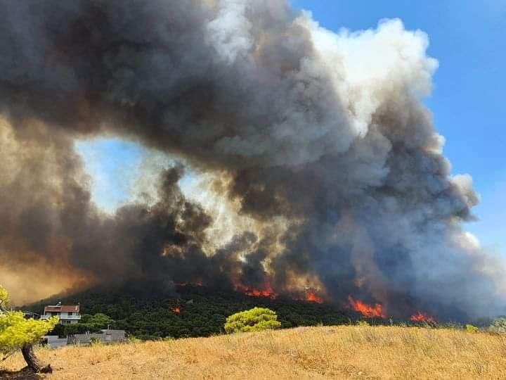 Κερατέα – Ο καπνός από τη φωτιά έφτασε ως τις Σπέτσες – Τι κατέγραψε ο δορυφόρος   tovima.gr