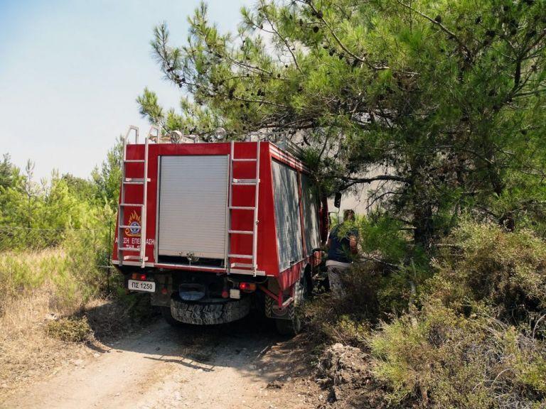 Φωτιά στα Βίλια – Καίει δασική έκταση – Επιχειρούν εναέρια μέσα   tovima.gr