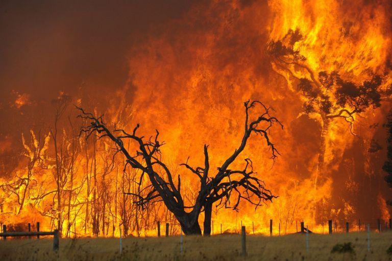 Κλιματική αλλαγή – Ώρα μηδέν για τον πλανήτη | tovima.gr