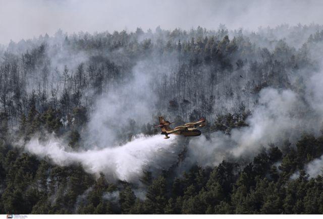 Βίλια – Μαίνεται ανεξέλεγκτη η φωτιά – Καίγεται πυκνό πευκοδάσος – Φόβος για τους οικισμούς   tovima.gr