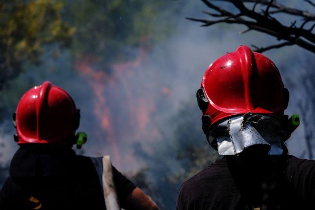 Βίλια – Μαίνεται η πυρκαγιά μέσα στο πευκοδάσος, κινείται προς το Παλαιοχώρι – Επιχειρεί και το Beriev   tovima.gr