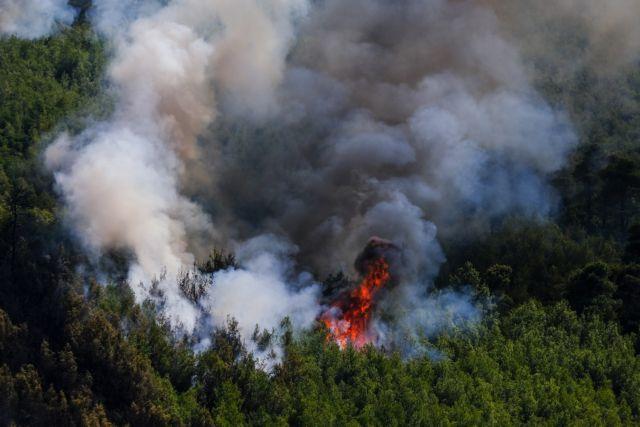 Φωτιά στα Βίλια – Κοντά στους οικισμούς Παλαιοχώρι και Θέα οι φλόγες | tovima.gr