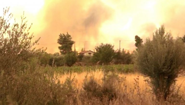 Vilia – Houses are burning – Fires have surrounded the settlement   tovima.gr