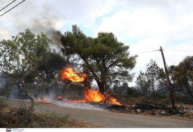 Βίλια – Ολονύχτια μάχη με τις φλόγες – Περιπολίες από στρατό και αστυνομία | tovima.gr
