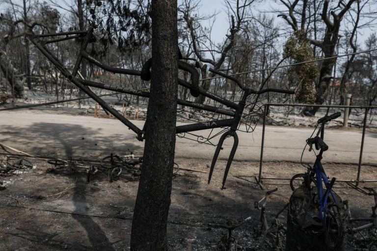 Εύβοια – «Το 90% της παραγωγικής δραστηριότητας δεν υπάρχει» λόγω της πυρκαγιάς | tovima.gr
