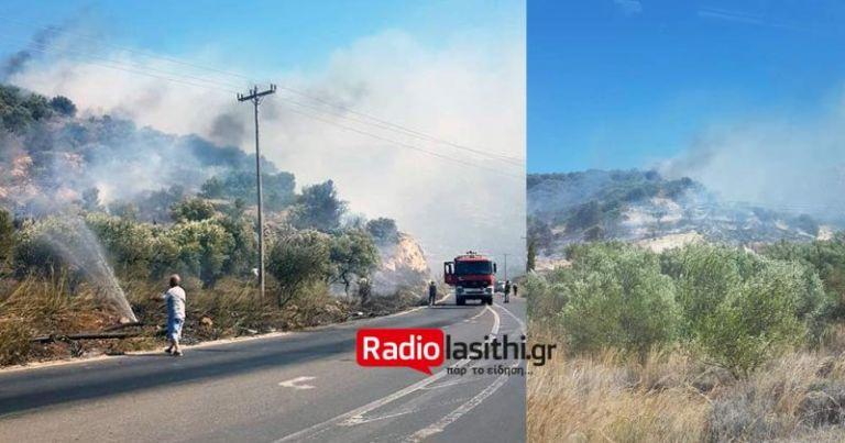 Φωτιά στην Ιεράπετρα – Κοντά στον οικισμό της Επισκοπής   tovima.gr