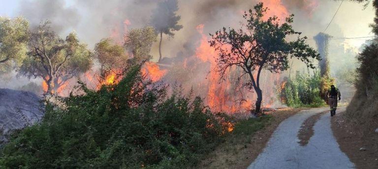 Φωτιά στη Ζάκυνθο: Προσήχθη ύποπτος για την πυρκαγιά στο Αργάσι   tovima.gr