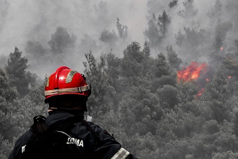 Εκκενώθηκαν δύο οικισμοί, κάηκαν σπίτια στα Βίλια – Καταγγελίες για εμπρησμό | tovima.gr