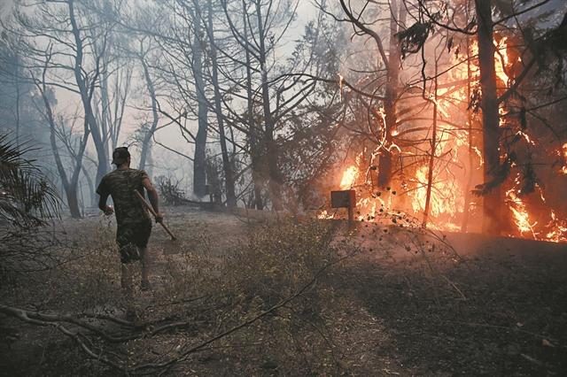 Φωτιές – Συγκλονίζουν οι εθελοντές – «Προτιμώ να μην έχω να φάω, παρά να τους αφήσω έτσι» | tovima.gr