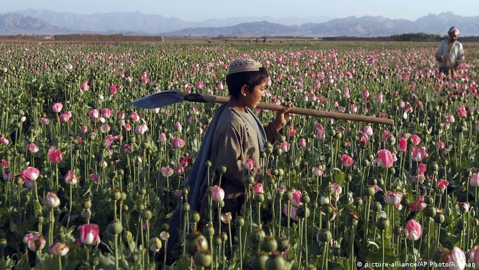 Mετά τη νίκη των Ταλιμπάν η οικονομική κρίση;   tovima.gr