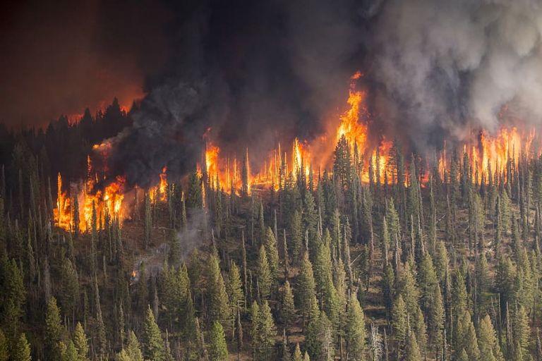 Κλιματική αλλαγή: Από την Αρκτική μέχρι την Ανταρκτική, το 2020 ήταν χρονιά φωτιάς και λάβρας | tovima.gr