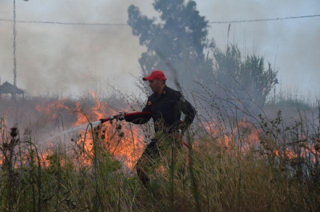 Φωτιά στο Μαρκόπουλο – Σηκώθηκαν και εναέρια μέσα | tovima.gr