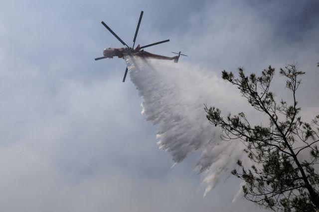 Φθιώτιδα – Σκληρή μάχη με τη φωτιά στο Λογγίτσι  – Απειλούνται σπίτια   tovima.gr
