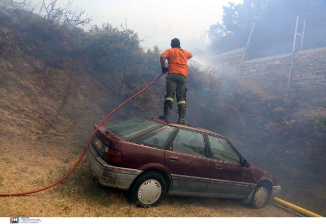 Θλιβερό ποσοστό – To 1/3 των δασών της Εύβοιας κάηκε από την πρόσφατη πυρκαγιά | tovima.gr