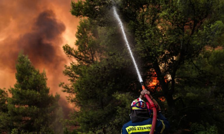 One third of Evia forests burned   tovima.gr