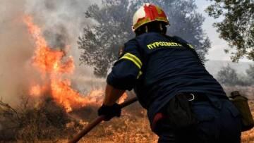 Μεγάλη φωτιά στην Άμφισσα | tovima.gr