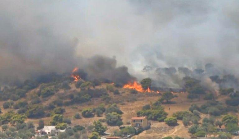 Φωτιά στη Ροδόπη – Καίει αγροτοδασική έκταση | tovima.gr