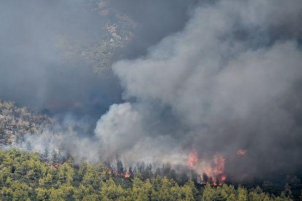 Κως – Φωτιά σε δασική έκταση – Επιχειρούν και εναέρια μέσα | tovima.gr