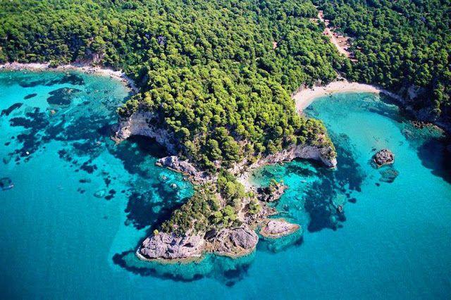 Δάσος Βαλανιδοράχης – Απαλλοτριωμένο και αποζημιωμένο, στα χέρια ιδιωτών | tovima.gr