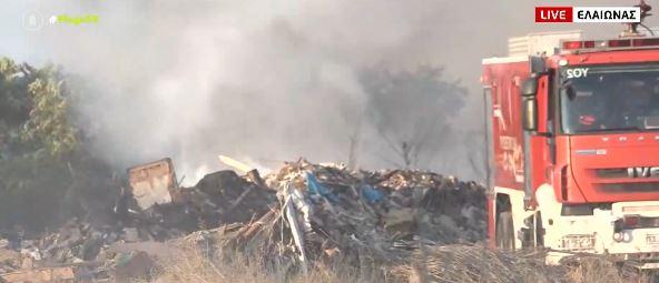 Φωτιά στον Ελαιώνα – Έχει περιοριστεί το μέτωπο – Πού έχει διακοπεί η κυκλοφορία | tovima.gr