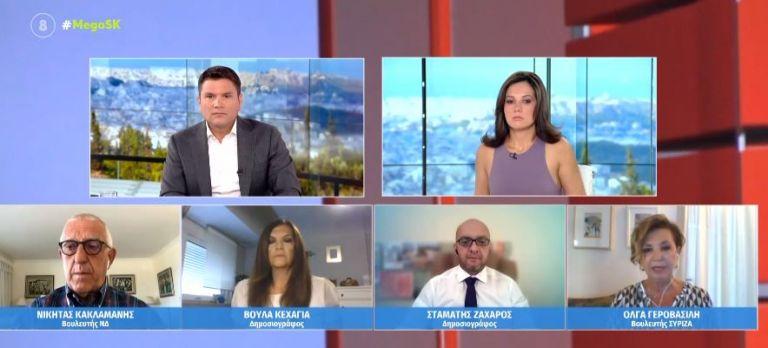 Γεροβασίλη για Πλεύρη – Η υπουργοποίηση του μας κάνει διεθνώς ρεζίλι | tovima.gr