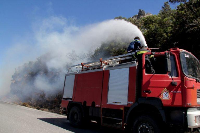 Πυρκαγιά σε δασική έκταση στις Ερυθρές Αττικής | tovima.gr