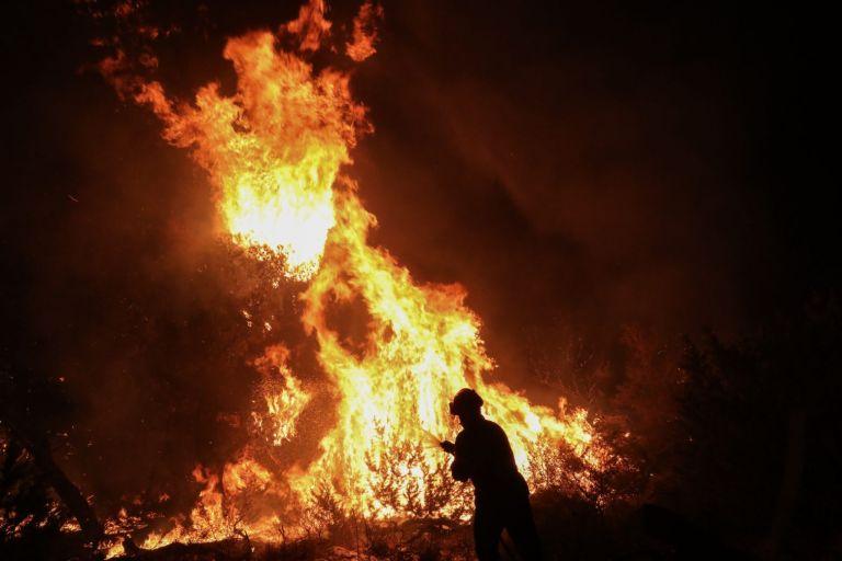 Φωτιά στη Νέα Μάκρη – Με το φως της ημέρας θα αποκαλυφθεί η έκταση της καταστροφής – Υποψίες για εμπρησμό | tovima.gr