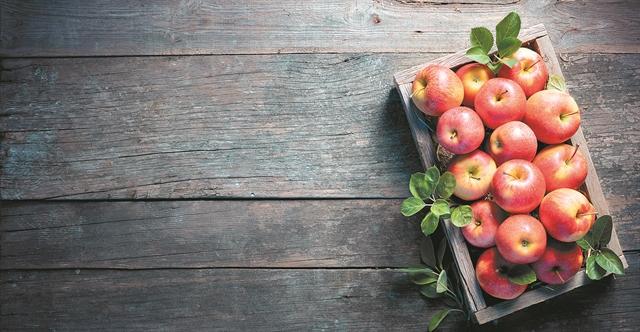 Τα μήλα του… κυρίου Σαμ | tovima.gr