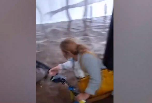 Κακοκαιρία «Μπάλλος» – Βίντεο ντοκουμέντα από τον απεγκλωβισμό πολιτών από το λεωφορείο που «βούλιαζε» | tovima.gr